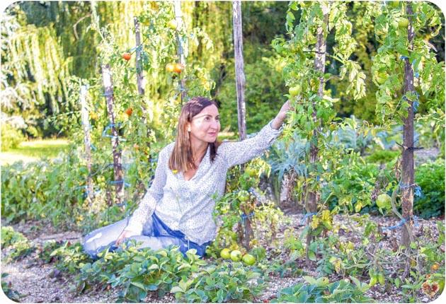 Blog de cocina y recetas alma verde Ana Scasso