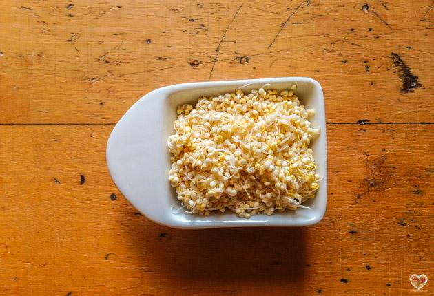 como preparar rejuvelac en casa con germinados de quinoa
