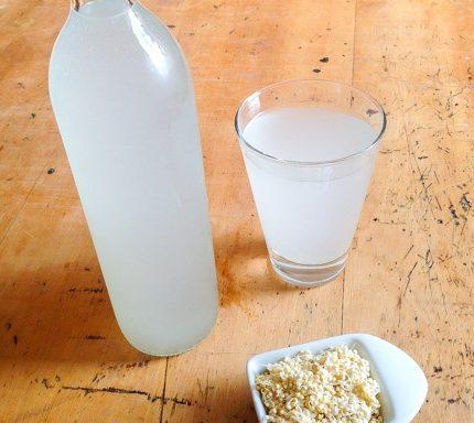 como preparar rejuvelac en casa recetas blog nutricion