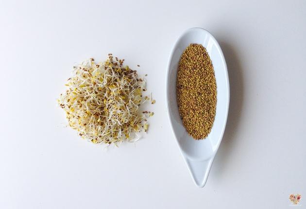 cuales son los beneficios de consumir germinados alimentos vivos